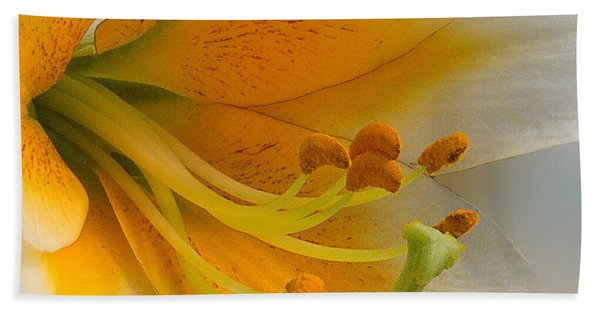 Bath Towel featuring the photograph Gold Daylily Close-up by Patti Deters