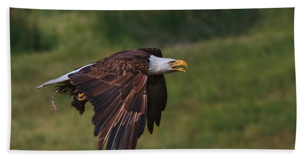Eagle With Prey Bath Towel