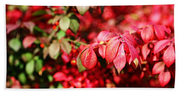 Fall Foliage Colors 10 Bath Towel