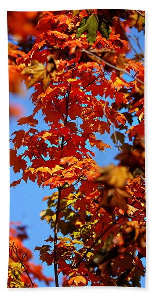 Fall Foliage Colors 15 Bath Towel