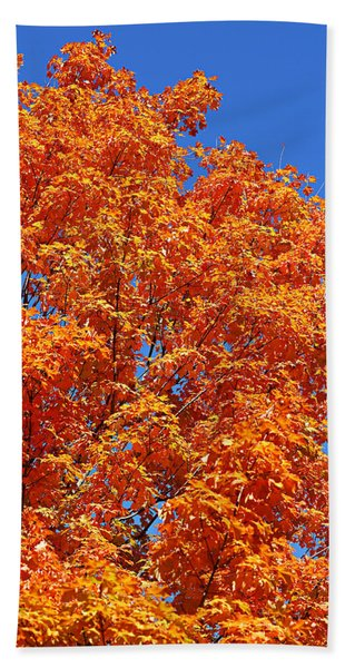 Fall Foliage Colors 18 Bath Towel