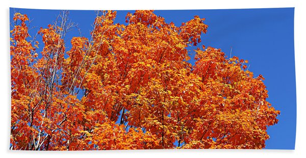 Fall Foliage Colors 19 Bath Towel