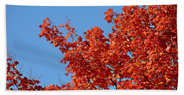 Fall Foliage Colors 20 Bath Towel