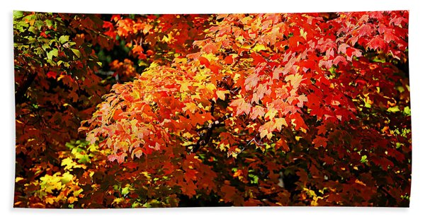Fall Foliage Colors 21 Bath Towel
