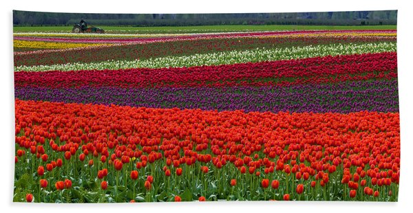Field Of Tulips Hand Towel