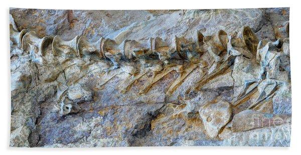 Fossilized Dinosaur Backbone - Dinosaur National National Monument Hand Towel