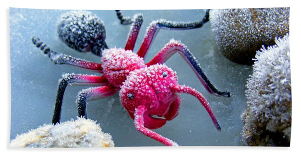 Frosty Ant In Winter Hand Towel