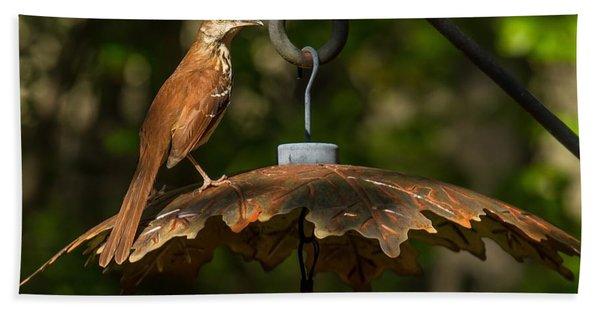Georgia State Bird - Brown Thrasher Hand Towel