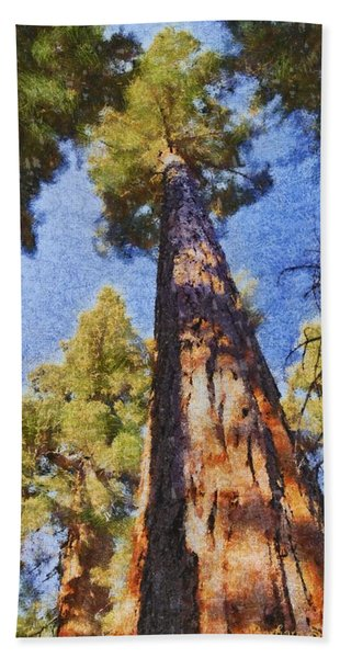 Giant Sequoia Pastel Bath Towel