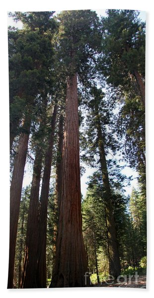 Giant Sequoias - Yosemite Park Bath Towel