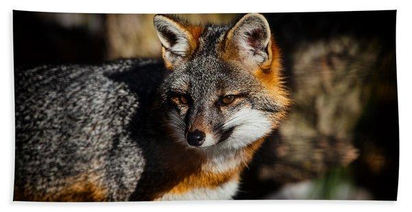 Gray Fox Bath Towel
