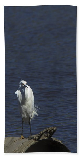 Great Egret Hand Towel