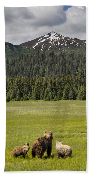 Grizzly Bear Mother And Cubs In Meadow Bath Towel