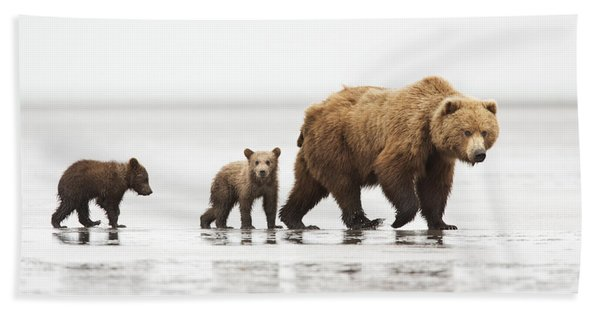 Grizzly Bear Mother And Cubs Lake Clark Bath Towel