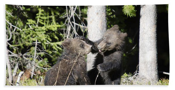 Grizzly Cubs Playing Bath Towel