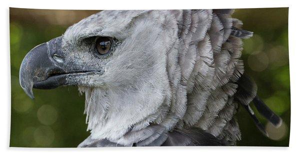 Harpy Eagle, Harpia Harpyja Hand Towel