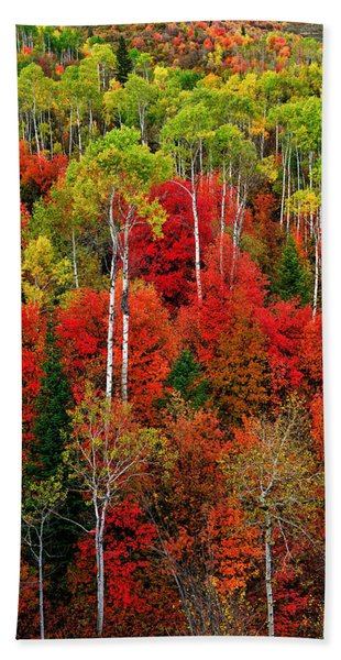 Bath Towel featuring the photograph Idaho Autumn by Greg Norrell
