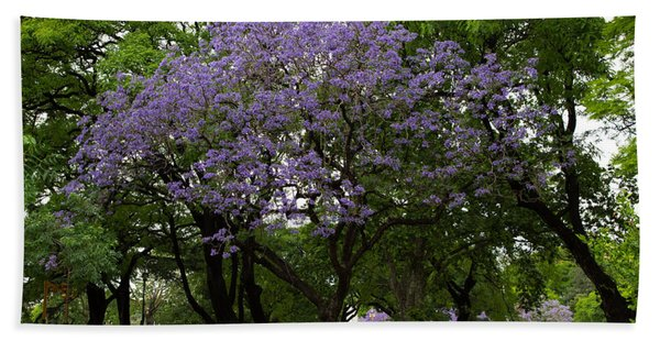 Jacaranda In The Park Bath Towel
