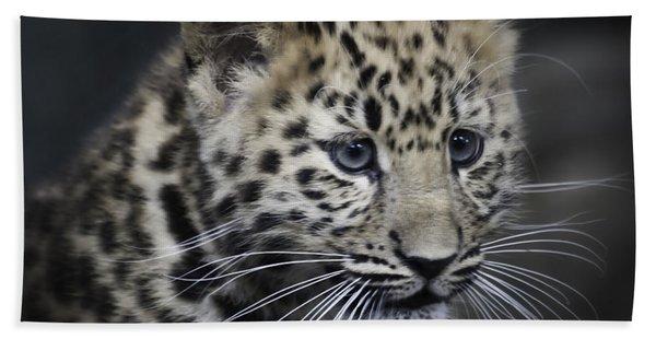 Kanika - Amur Leopard Portrait Hand Towel