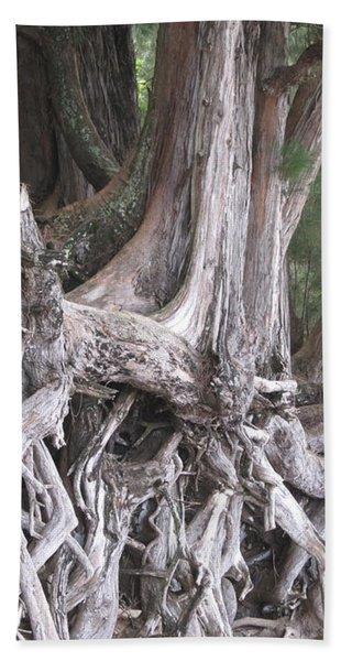 Kauai - Roots Hand Towel