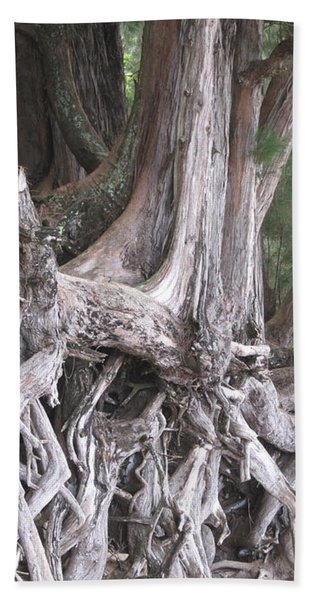 Kauai - Roots Bath Towel