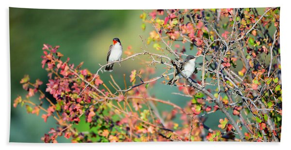 Bath Towel featuring the photograph Kingbird Pair by Greg Norrell