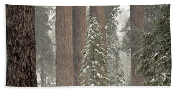 Kings Canyon National Park, California Bath Towel
