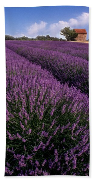 Lavender In Provence Bath Towel