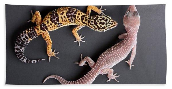Leopard Gecko E. Macularius Collection Bath Towel