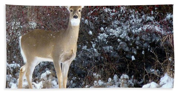March Snow And A Doe Hand Towel