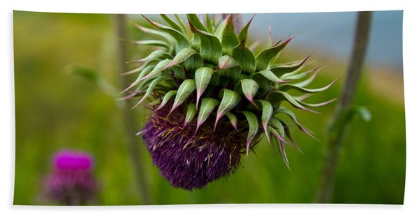 Milk Thistle Hand Towel