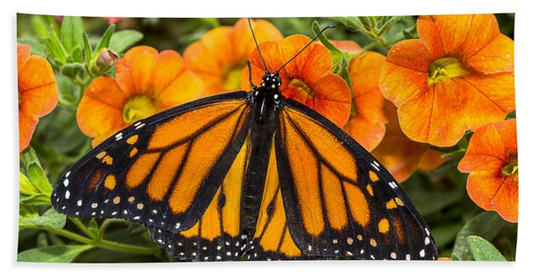 Monarch Resting Hand Towel