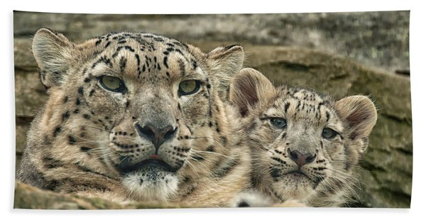 Mother And Cub Hand Towel
