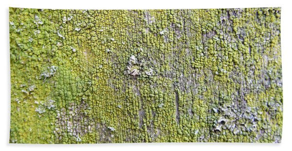 Natural Abstract 1 Old Fence With Moss Bath Towel