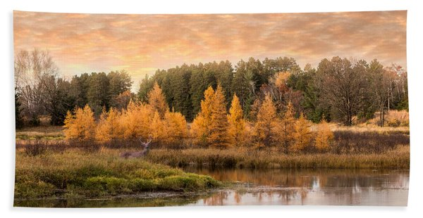 Bath Towel featuring the photograph Tamarack Buck by Patti Deters