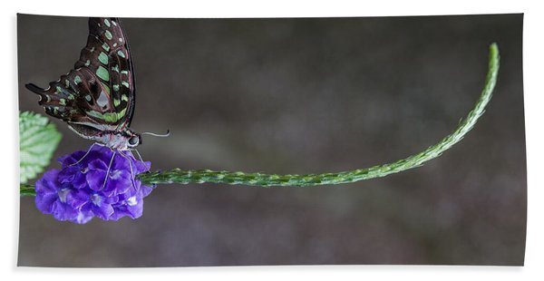 Bath Towel featuring the photograph Butterfly - Tailed Jay II by Patti Deters