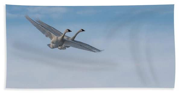 Bath Towel featuring the photograph Trumpeter Swan Tandem Flight I by Patti Deters