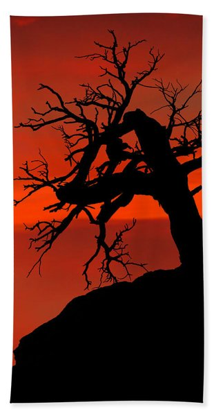 Bath Towel featuring the photograph One Tree Hill Silhouette by Greg Norrell