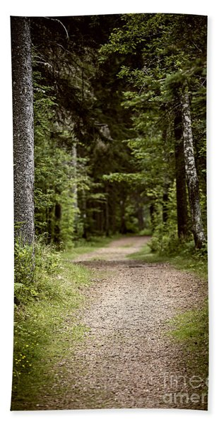 Path In Old Forest Hand Towel