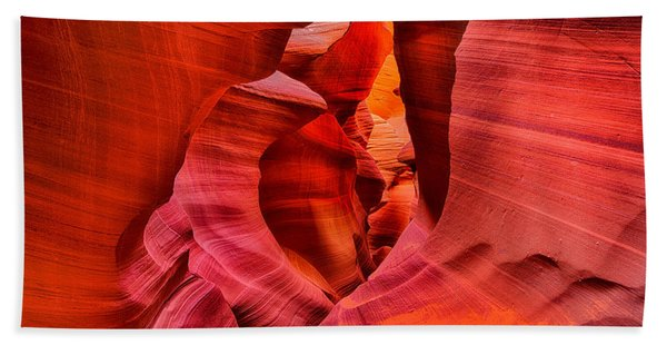 Bath Towel featuring the photograph Pathway To Beauty by Greg Norrell
