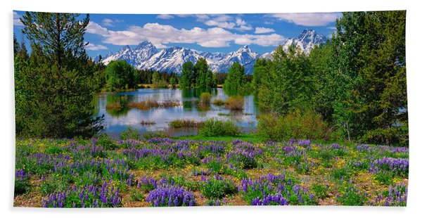 Bath Towel featuring the photograph Pilgrim Creek Wildflowers by Greg Norrell