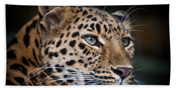 Portrait Of A Leopard Hand Towel