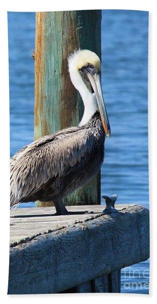 Posing Pelican Hand Towel