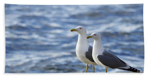 Posing Seagulls Hand Towel