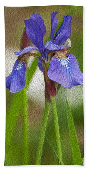 Purple Bearded Iris Oil Hand Towel