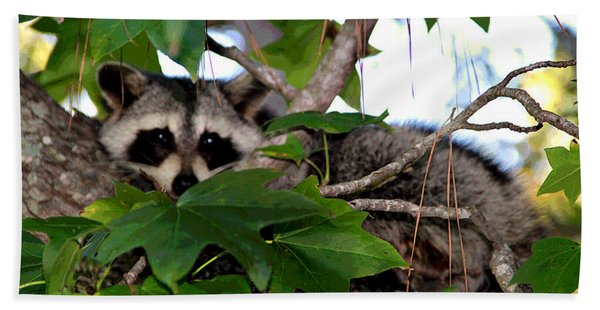 Raccoon Eyes Hand Towel
