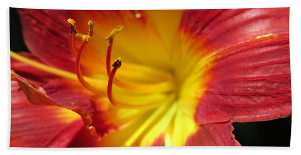 Red And Yellow Day Lily Hand Towel