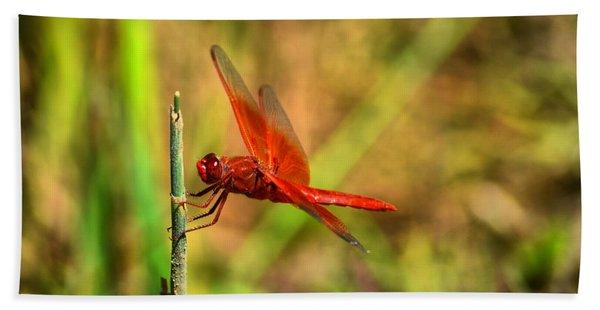 Red Dragon Dreams Hand Towel