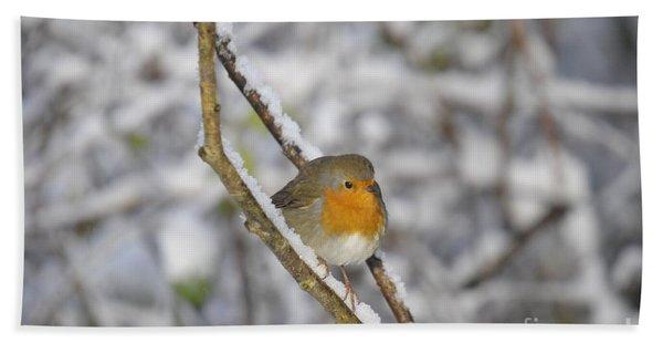 Robin At Winter Bath Towel