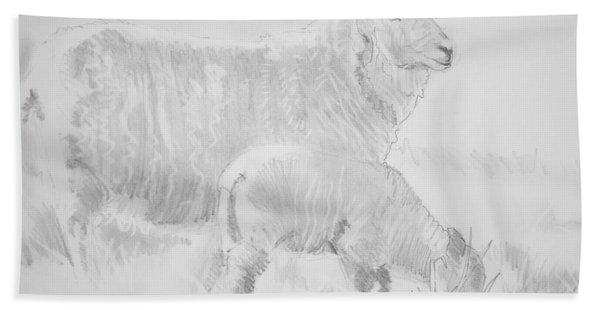 Sheep Lamb Pencil Drawing Bath Towel